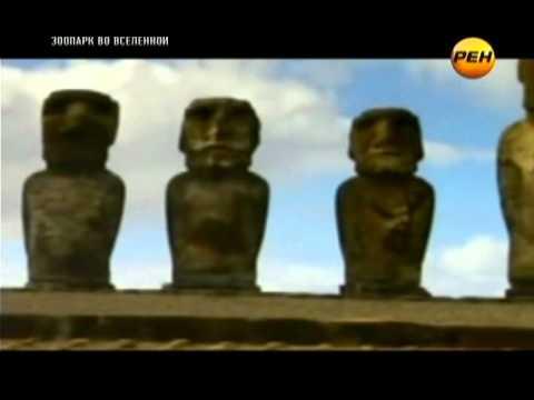 Зоопарк во Вселенной (эфир 08.03.2012)