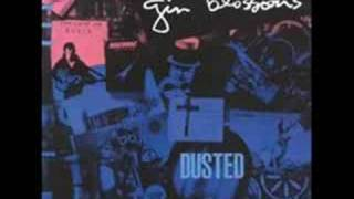 Gin Blossoms original Hey Jealousy & Found Out About You