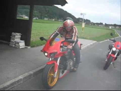 HarleyBUDT