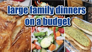 COOK WITH ME FAMILY DINNERS ON A BUDGET | What's for Dinner? | Vlogmas 2019 #24