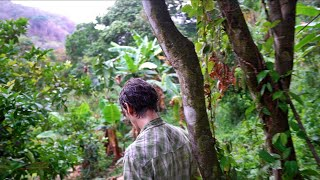 Rare Tropical Fruit Collector HAS IT ALL: Trekking Paul Zinks 7-Year-Old Food Forest