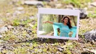 Vadhantune ( I Am In Love ) Song || Run Raja Run || Sung by Divya Konduru