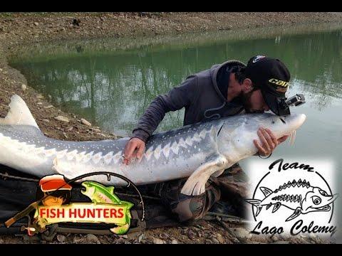 Guardare la pesca estrema video