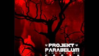 Video Projekt Parabelum Cesta
