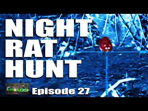 Airheads – Night Rat Hunt