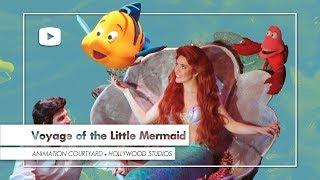 Voyage of the Little Mermaid (Highlights), Disney's Hollywood Studios, Walt Disney World