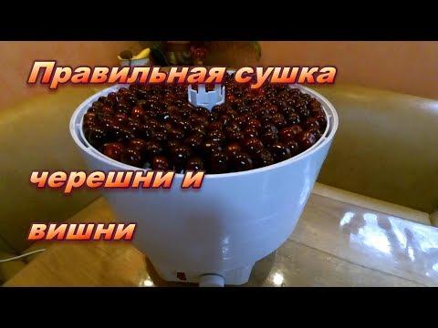 Как правильно сушить вишню и черешню. Сохраним все витамины!