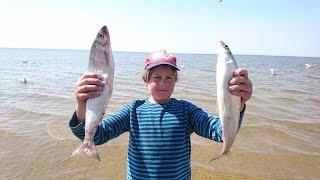 Рыбалка - озеро байкал