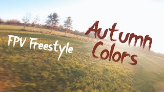 Autumn Colors | FPV Freestyle