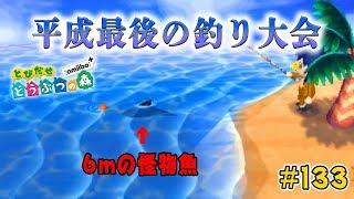 平成最後のとび森つり大会はあの魚で優勝狙うわ。#133【とびだせどうぶつの森 実況プレイ】
