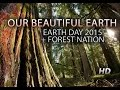 OUR BEAUTIFUL EARTH: A Visual Journey + Earth.