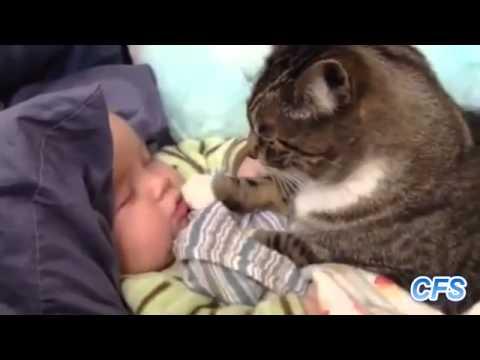 Klein pryschtschiki auf dem Glied beim Kind