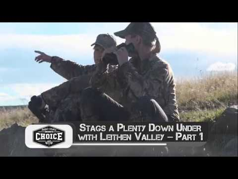 Stags a Plenty down under with Leithen Valley – Part 1