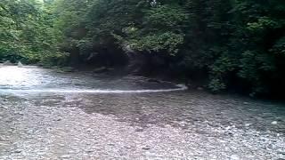 Внезапный подъем воды в реке Западный Дагомыс