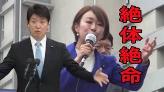 足立康史の追い詰め方ハンパなし!山尾志桜里、議員生命、絶体絶命!