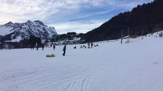 スイス発 中央スイス・ブルンニでそり滑り【スイス情報.com】