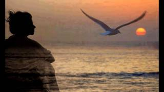 Kutsi - Baharda Kuşlar Gibi