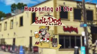 The Salty Dog gets Social