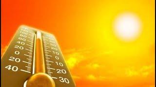Продолжительная жара ухудшает работу мозга