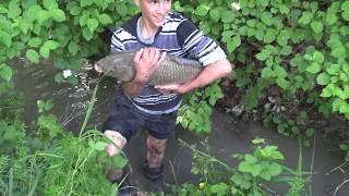 Благовещенка 2016 -Спуск озера и отлов рыбы