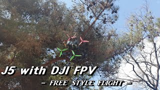 Johnny J5/DJI FPV/FREE STYLE FLIGHT