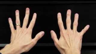 Finger Numbers (2015) - Hoffman Academy