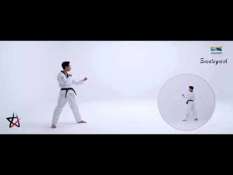 Taekwondo New Kukkiwon Competition Poomsae #03 Saebyeol – New Star 새별 (18-30)