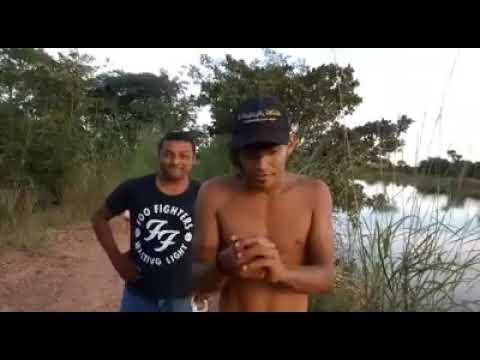De Barra do Ouro Tocantins para o Brasil. kkkkkkkk