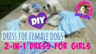 DIY 2-in-1 Dress For Female Dogs For Photoshoot, Coton De Tulear I Lorentix