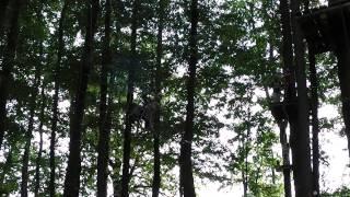 preview picture of video 'Kletterwald Zittauer Gebirge'
