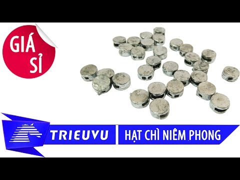 hat chi niem phong dong ho dien nuoc gia si tai tp.hcm