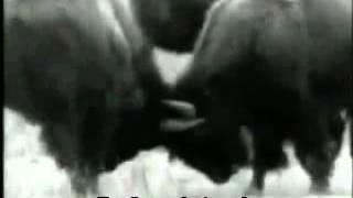 U2 - One [legendado]