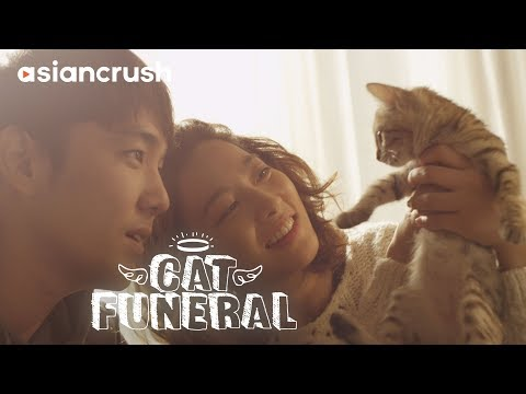 We broke up, but our cat reunited us | Full Movie 'Cat Funeral' starring Kangin