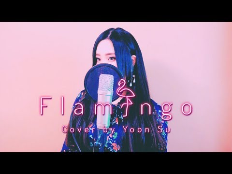 米津玄師 (Kenshi Yonezu) - Flamingo (フラミンゴ) +5Key Up┃Cover By Yoonsu