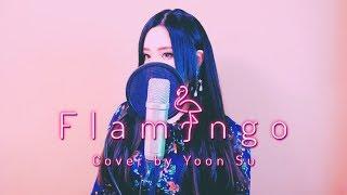 米津玄師 (Kenshi Yonezu) - Flamingo (フラミンゴ) +5Key up┃Cover by yoonsu