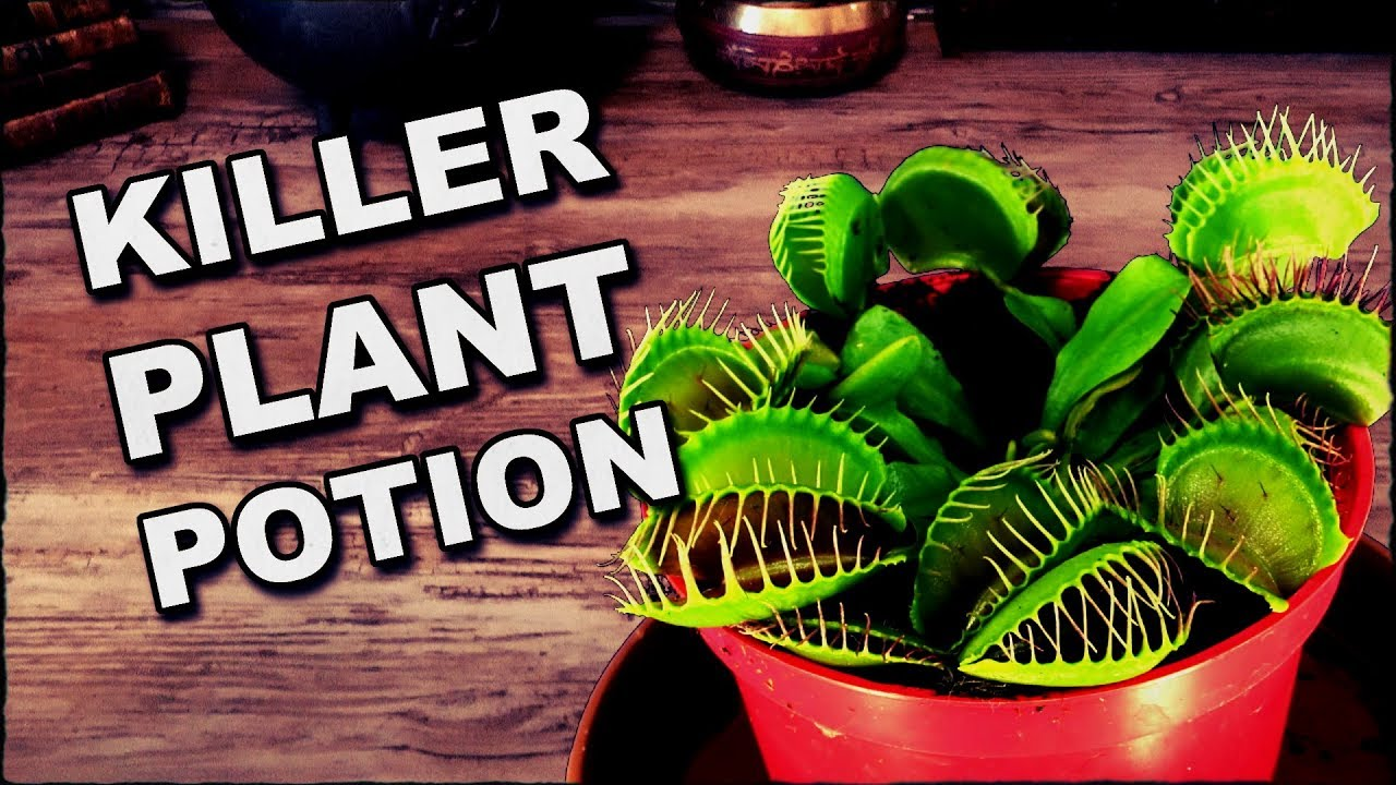 How To Make A Potion To Grow A Man-Eating Plant