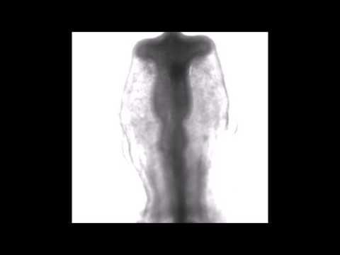 The effects of prostatitis for men