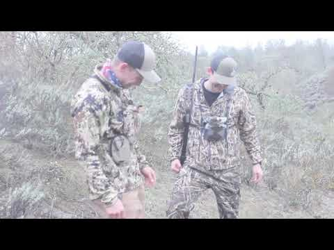 California Pig Hunt