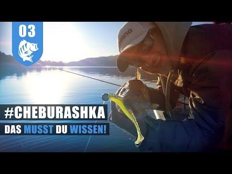 Cheburashka - und die Zander rasten aus!