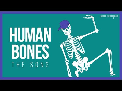 THE HUMAN BONES SONG | Science Music Video