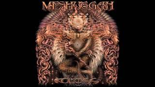Meshuggah - The Demon's Name Is Surveillance (﴾ʘƦɪɢɪɴɑʟ﴿)