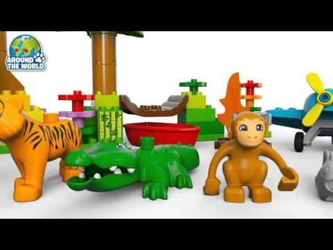 Vidéo LEGO Duplo 10804 : La jungle