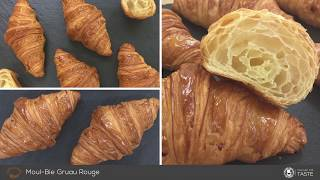Tutorial How To Make a French Classic Croissant