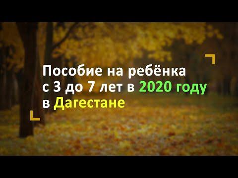 Пособие на ребёнка с 3 до 7 лет в Дагестане в 2020 году
