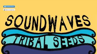 Tribal Seeds   Soundwaves Feat Eric Rachmany Of Rebelution (OFFICIAL)