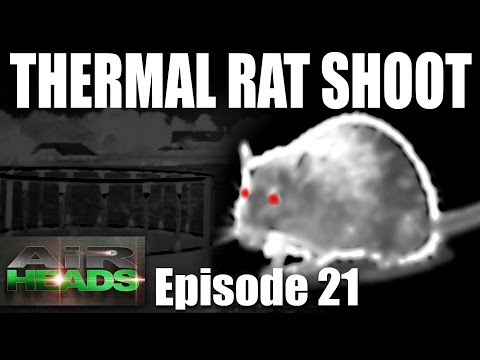 AirHeads – Thermal Rat Shoot