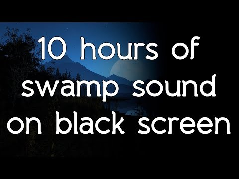 🎧 Swamp sounds swamp sound on black screen dark screen white noise HQ ASMR sounds of nature