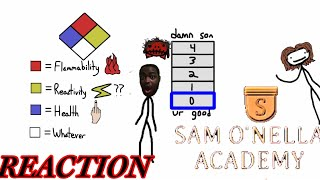 SECRET OF THE RED DIAMOND! SAM O NELLA REACTION
