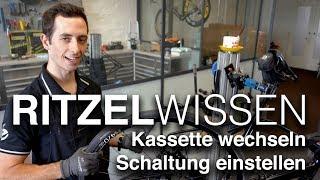 Neues Ritzelpaket! Rennrad-Kassette wechseln & Schaltung einstellen (Shimano an Specialized Diverge)