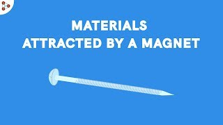 Fun with Magnets - Materials attracted by a Magnet? | Don't Memorise